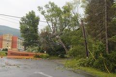Skadade kraftledningar för stupat träd i efterdyningen av strängt väder och tromben i Ulster County, New York Royaltyfri Bild