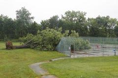 Skadade kraftledningar för stupat träd i efterdyningen av strängt väder och tromben i Ulster County, New York Royaltyfria Bilder
