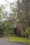 Skadade kraftledningar för stupat träd i efterdyningen av strängt väder och tromben i Ulster County, NY Arkivbilder