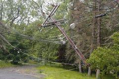 Skadade kraftledningar för stupat träd i efterdyningen av strängt väder och tromben i Ulster County, NY Arkivfoto