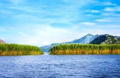 Skadar湖国家公园,黑山 免版税库存照片