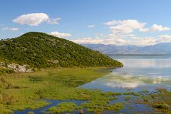 skadar的湖 库存图片