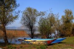 skadar的湖 免版税库存照片