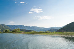 Skadar lake in Montenegro and Albania. One of the largest lakes in Europe Skadar Lake Stock Images