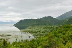 Skadar Lake, Montenegro. Skadar lake in Montenegro after rain Royalty Free Stock Photo