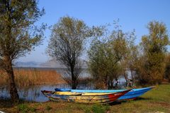 Skadar Lake. Montenegro Virpazar Skadar Lake Godinje village royalty free stock photo