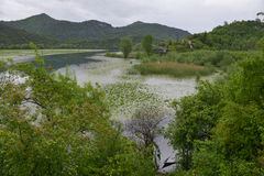 Skadar Lake, Montenegro. Water-way and lakeside overgrown with water plants, trees, mountains and sunken boats at the Skadar lake Stock Photo