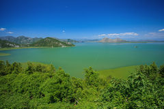 Skadar lake national park Royalty Free Stock Photography