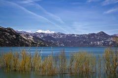 Skadar lake. Photo was taken at Skadar lake, Montenegro Stock Image