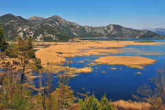 Skadar lake on summer, natural landscape Royalty Free Stock Photos