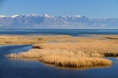 Skadar sjö Arkivfoton
