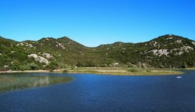 Skadar sjö i Montenegro, Europa royaltyfri bild
