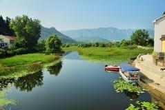 Skadar sjö Montenegro Fotografering för Bildbyråer