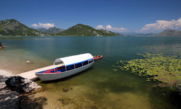 Skadar sjönationalpark, Montenegro Royaltyfri Fotografi