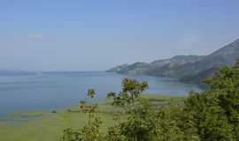 Skadarsko Jezero. The biggest lake in the Balkans, Skadarsko Jezero or Skadar Lake. Photograph taken from near Krusevica in Montenegro Royalty Free Stock Image