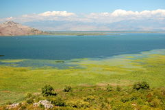Gorgeous picturesque scene of Lake Skadar in Monte Royalty Free Stock Photos