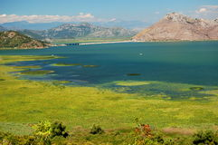 skadarsko jezero gora crna Стоковое Изображение RF