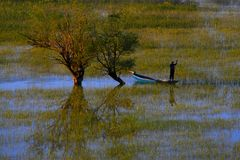 Skadarsko jezero - Montenegro stockfoto