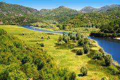 Skadarsko jezero, Montenegro, the largest lake in the Balkans Royalty Free Stock Photo