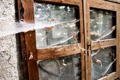 Skadat fönster av övergiven retro byggnad Royaltyfri Fotografi