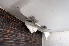 Skadat tak från vattenläckan Royaltyfria Bilder