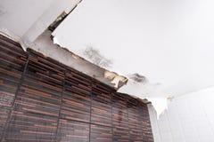 Skadat tak från vattenläckan Arkivfoto