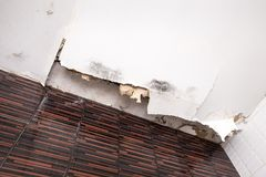 Skadat tak från vattenläckan Fotografering för Bildbyråer