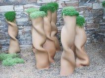 Skadliga vaser för Ð-¡ med växter Royaltyfria Bilder