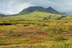 Skaftafell国家公园 免版税库存图片