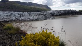 Skaftafell Glacier lagoon, Iceland royalty free stock photography
