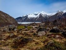 Skaftafell-Gletscher Island lizenzfreies stockbild