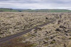 Skaftareldahraun lava fields in Iceland. Gravel road among Skaftareldahraun lava fields covered with moss in Iceland royalty free stock photography