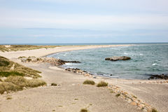 Skagen beach Royalty Free Stock Photography