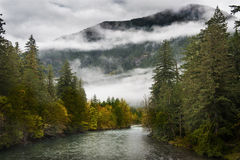 Skagit River Royalty Free Stock Photo