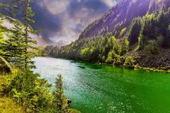Skagit River as storm gathers strength upstream. Skagit River, North Cascades National Park, Washington, `one awaits a gathering storm` pine trees Royalty Free Stock Images