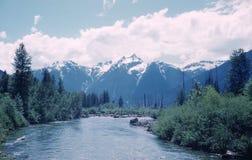 Skagit River Valley Fotografia de Stock