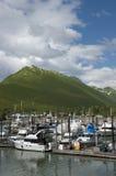 Skagway, Alaska, dentro da passagem, noroeste pacífico Fotos de Stock