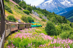 Skagway, Alaska. The scenic White Pass & Yukon Route Railroad royalty free stock photo