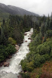 Skagway river Royalty Free Stock Image