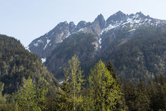 Skagway's Denver Valley Royalty Free Stock Photography