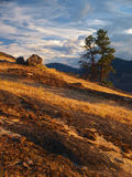 Skaha bluffs. Okanagan Valley, Canada Royalty Free Stock Image