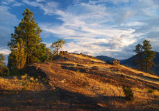 Skaha bluffs. Okanagan Valley, Canada Stock Photos