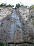 Skakavac del paesaggio dell'albero della cascata Immagine Stock Libera da Diritti