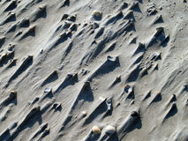 Skal med sand Arkivfoto