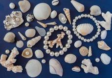 Skal och pärlor arkivbilder