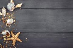Skal och sjöstjärna på blå träbakgrund Top beskådar Arkivbild