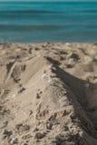 Skal på sand på avslappnande bakgrund för kust Royaltyfria Foton