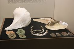Skal, trumpetsnäcka och pärlor som handlas av Weeden kultur som visas på det Kolomoki delstatsparkmuseet arkivbild