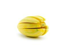 Skala av mango Arkivbilder