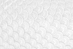 Skala för bakgrund för Abstact vit ren skalatextur royaltyfria foton